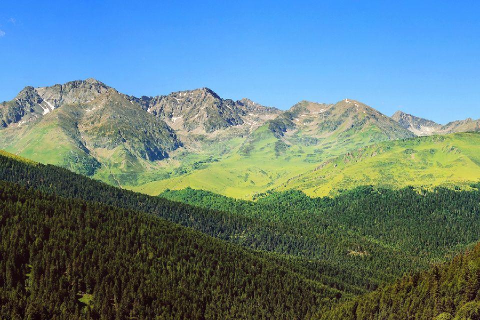 La flore andorrane , Andorre