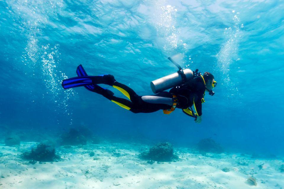 La plongée, oman, plongée, oman dive center, plongeur, mer, sultant, moyen-orient