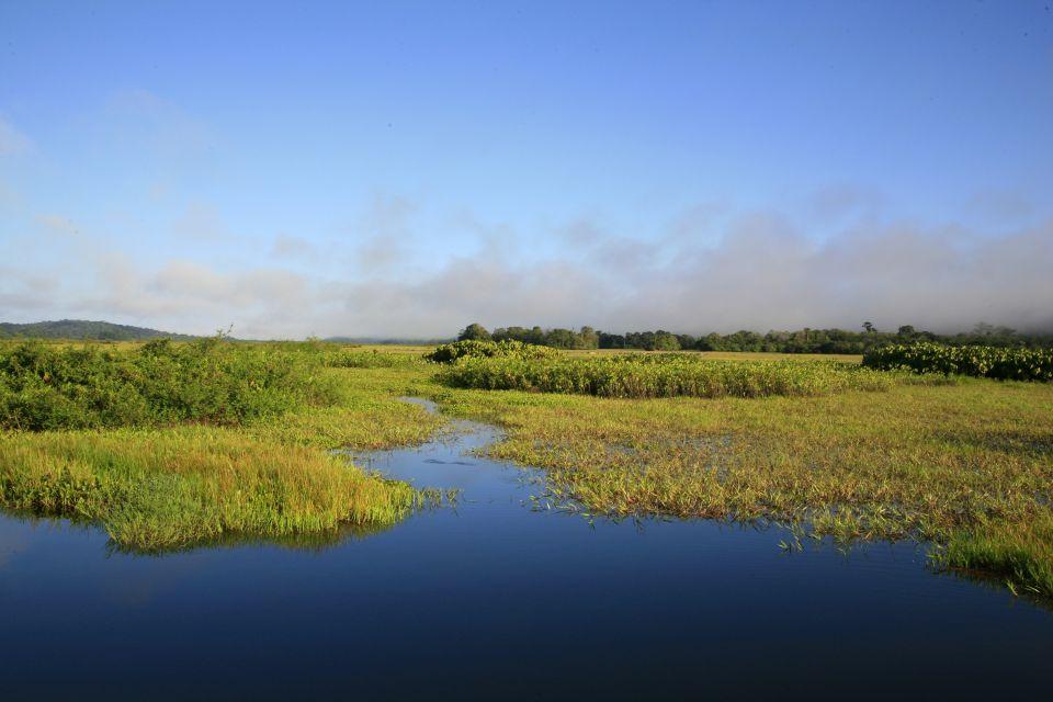 Das Moorgebiet Kaw-Roura, Die Parks und Reservate, Französisch-Guyana