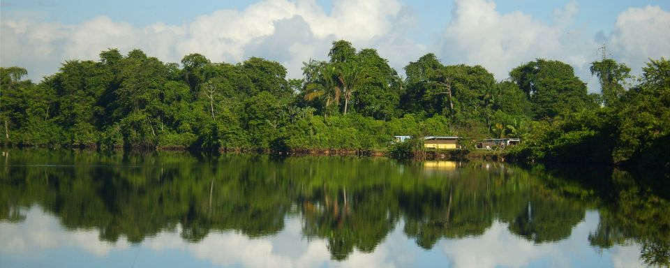 El parque regional de Guayana