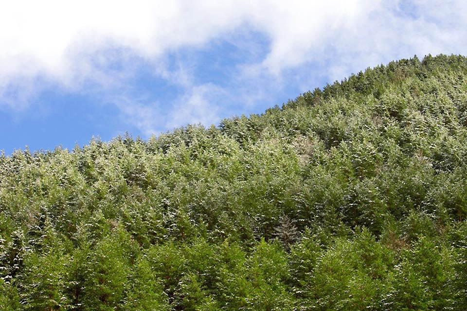 El Valle de Tena , Valle de Tena , España