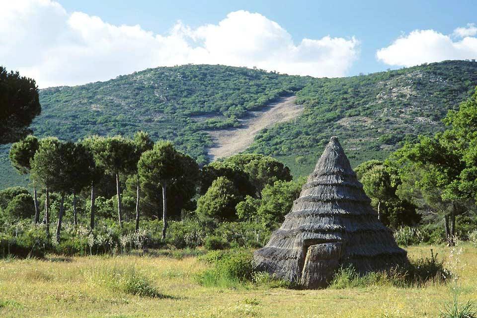 Parque Nacional de Cabañeros - Castilla la Mancha