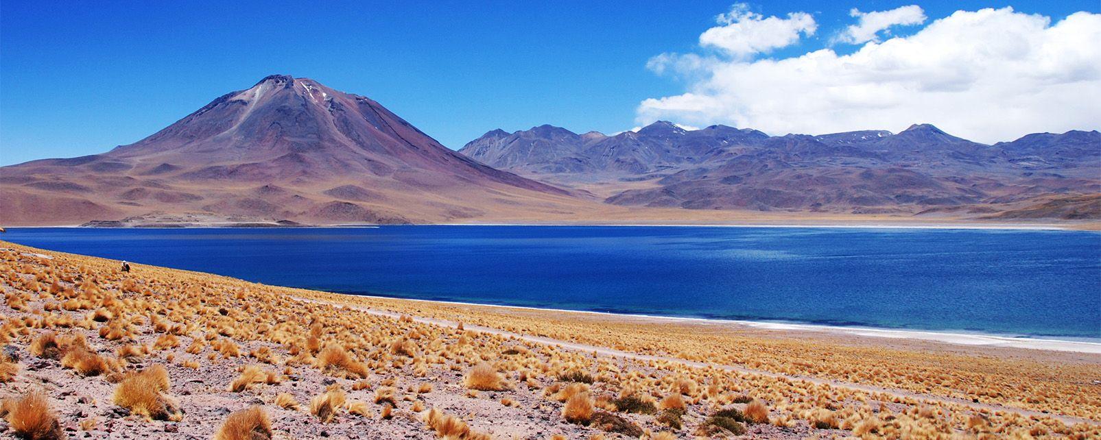 The Altiplano , Bolivia