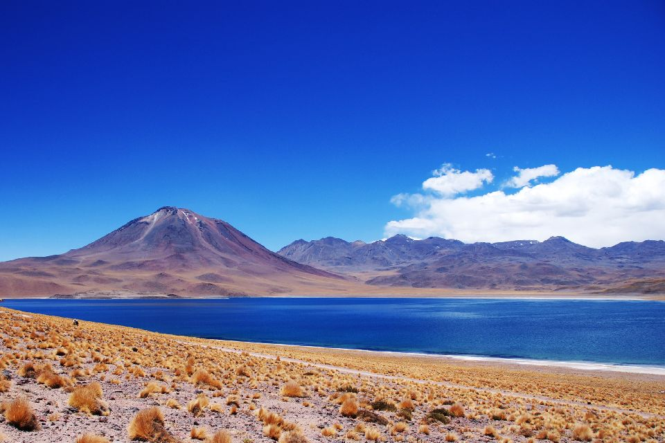 L'Altiplano , Bolivie