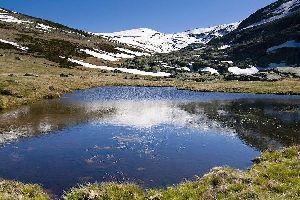 Sierra de Gredos , Espagne