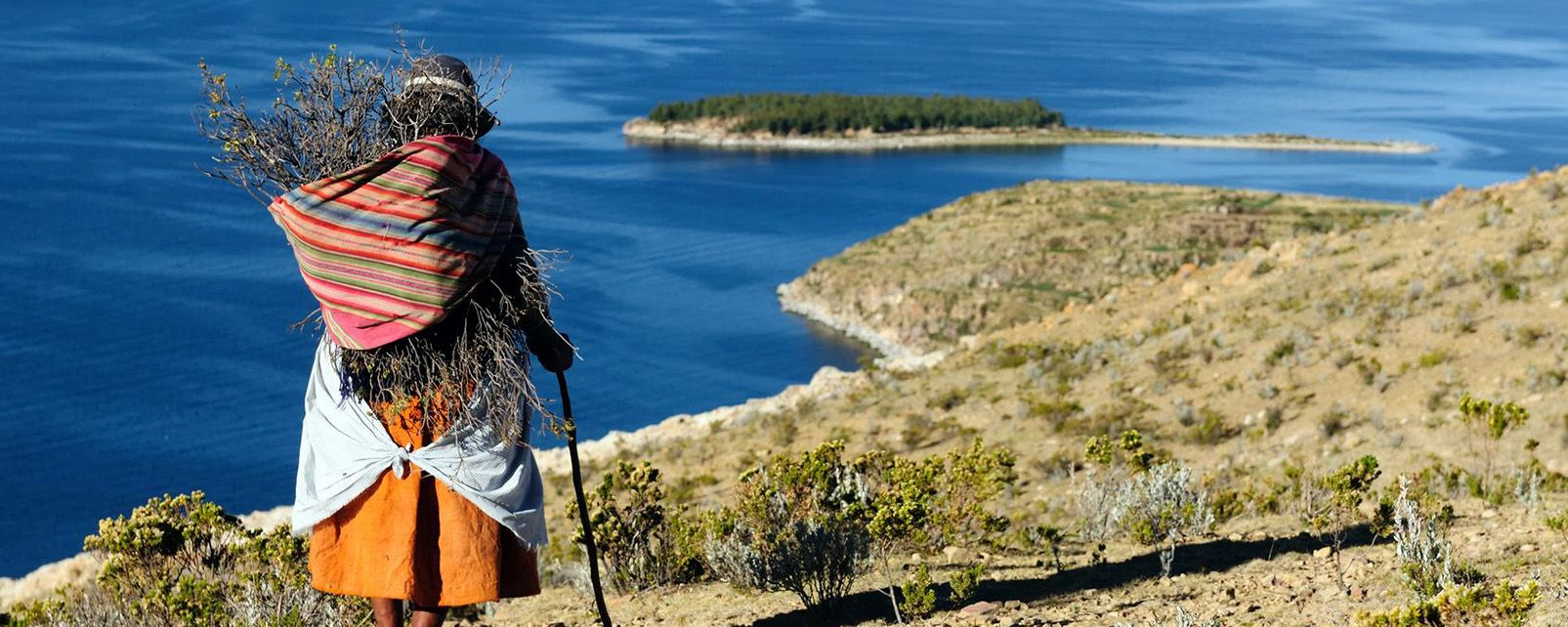 Le lac Titikaka , Lac Titicaca , Bolivie
