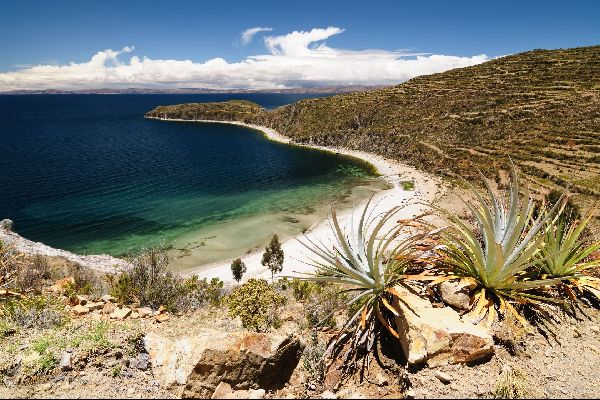 Le lac Titikaka , Région agricole , Bolivie