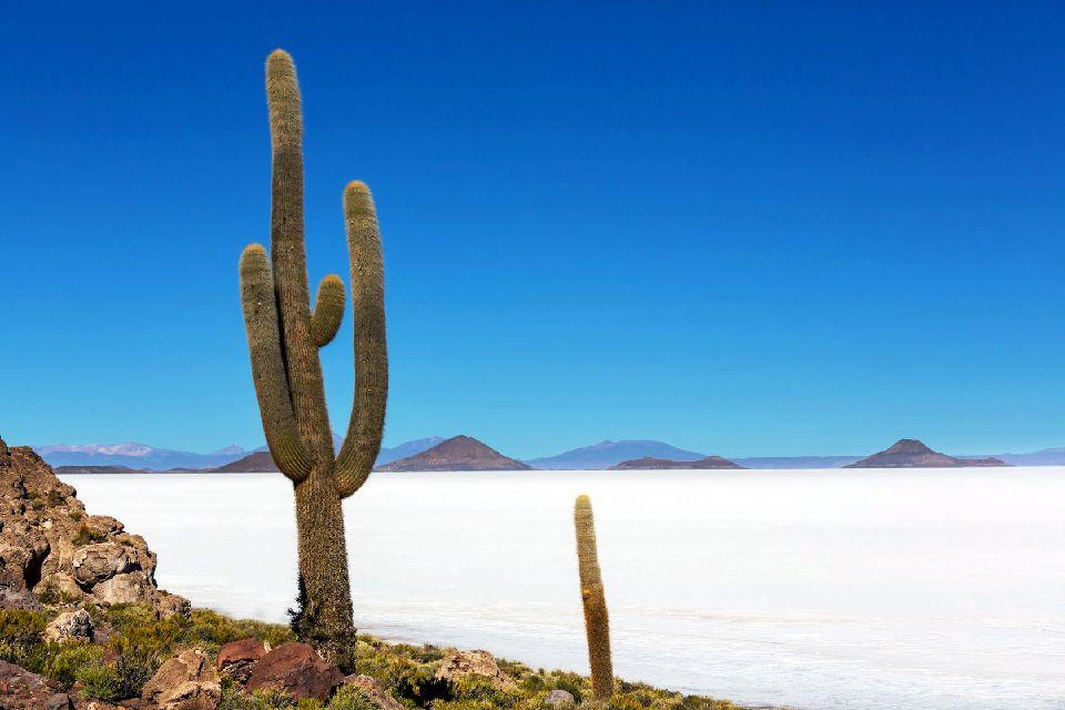 The Uyuni Salt Pan , Bolivia