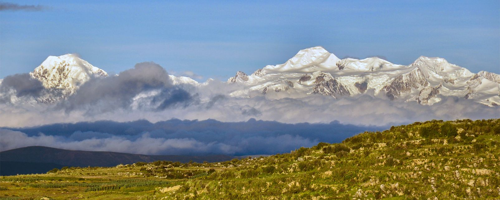 The royal cordillera , Bolivia
