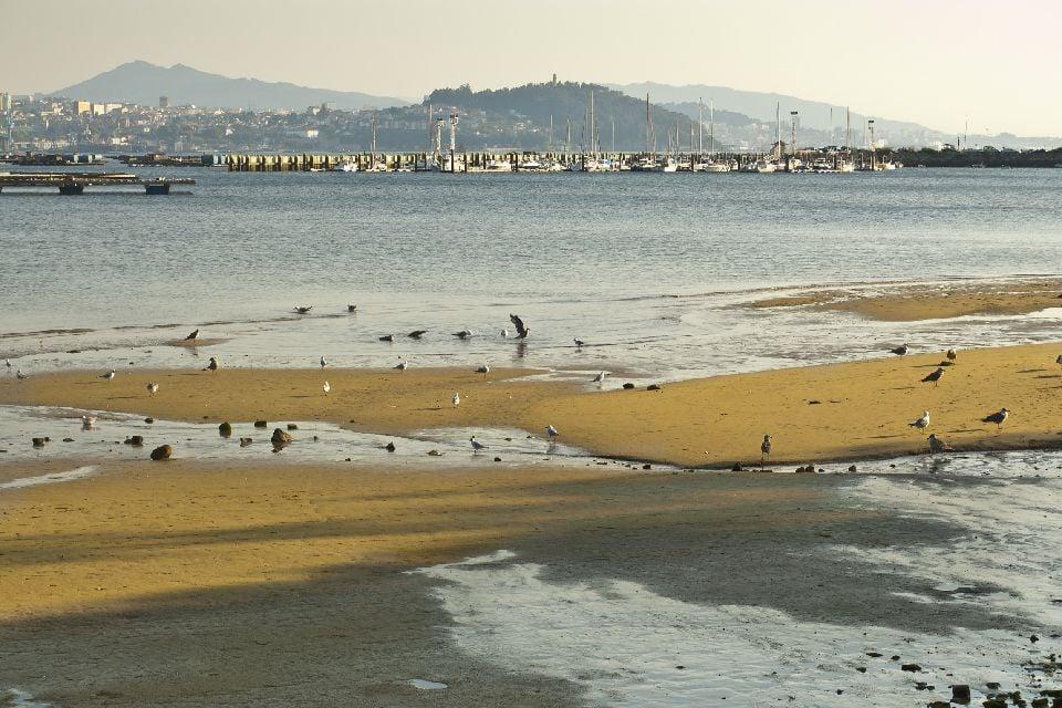 Les rías galiciennes , Espagne