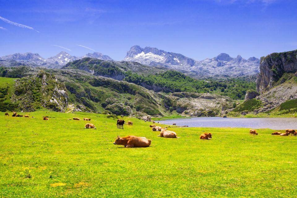 Los hórreos, Hórreos asturianos, Los paisajes, Asturias