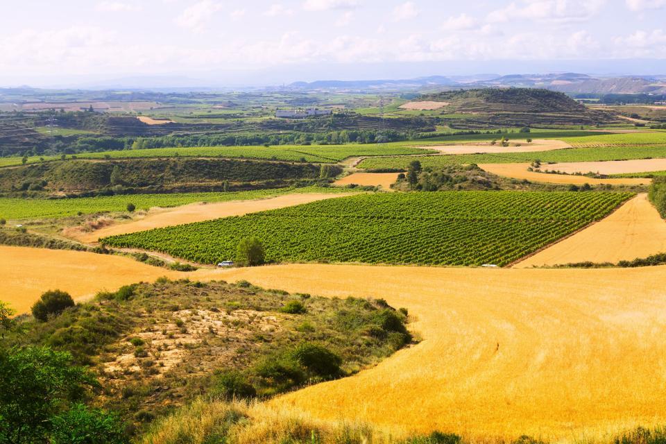Die Landwirtschafts- und Weinanbaugebiete , Die Landwirtschaft, La Rioja , Spanien