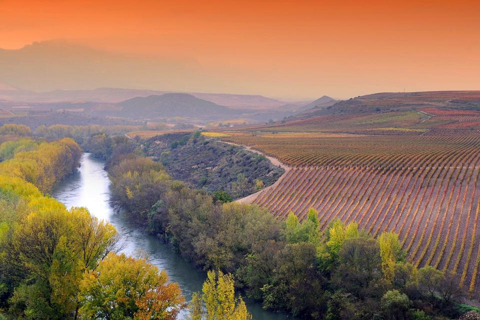 Valles de La Rioja Baja , España