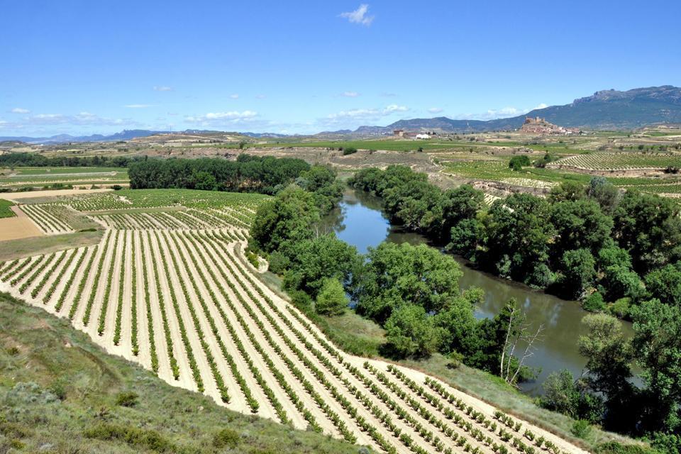 Rioja Alavesa , España