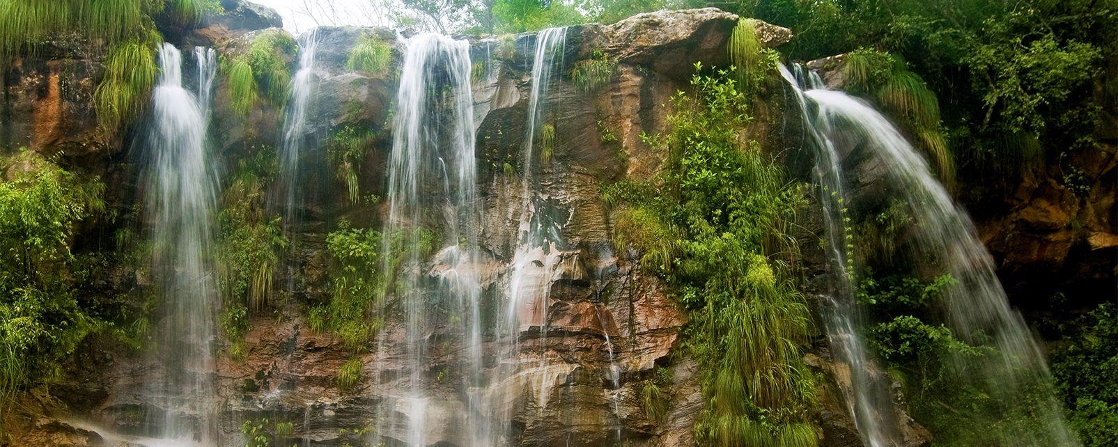 The Amazonian park of Kempff , Bolivia