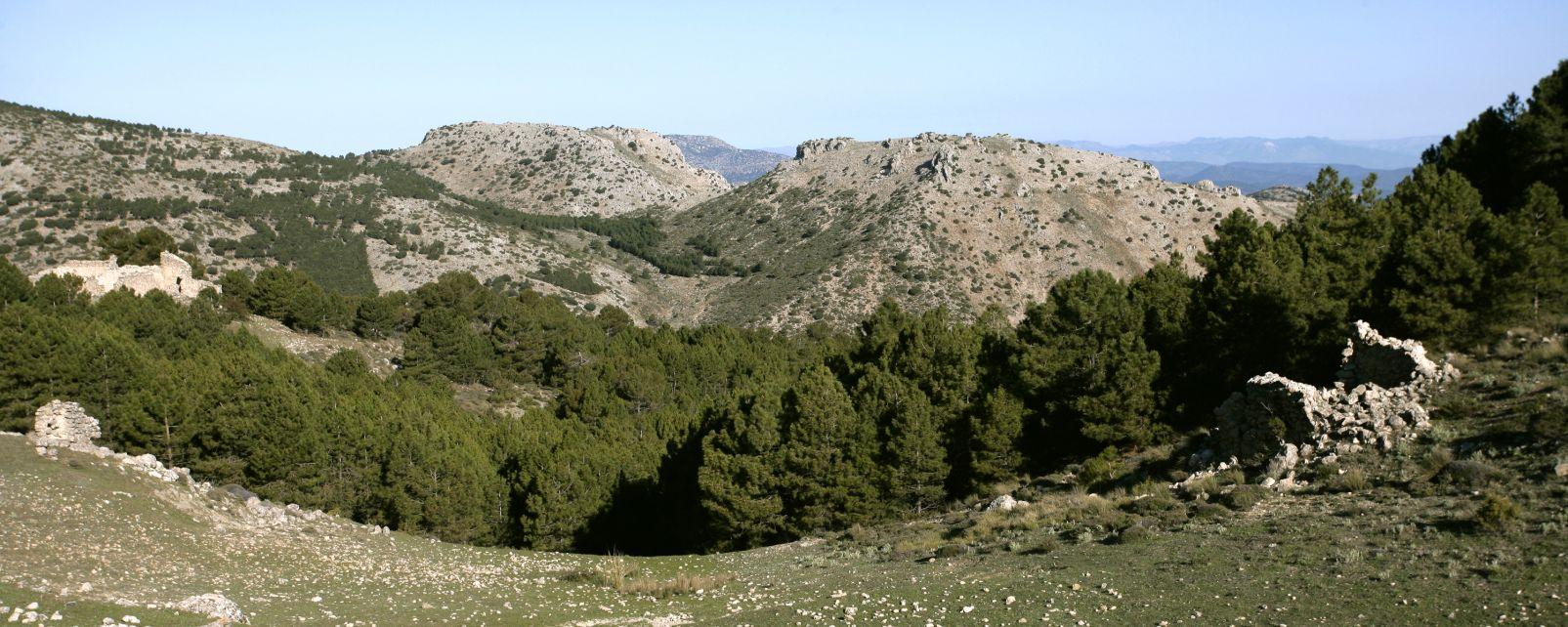 Reserva Regional Sierra Espuña, Murcia, Sierra Espuña, Fauna y flora, Murcia