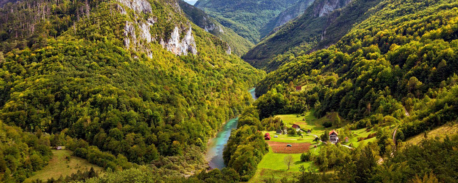 El cañón Tara , Montenegro