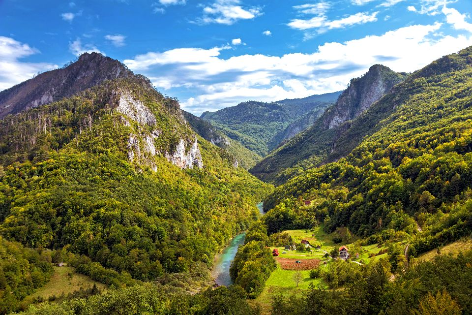 Il canyon Tara , Montenegro