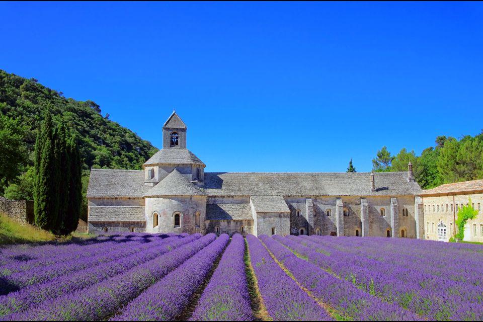Parque Natural Regional de Luberon , La lavanda de Provenza , Francia