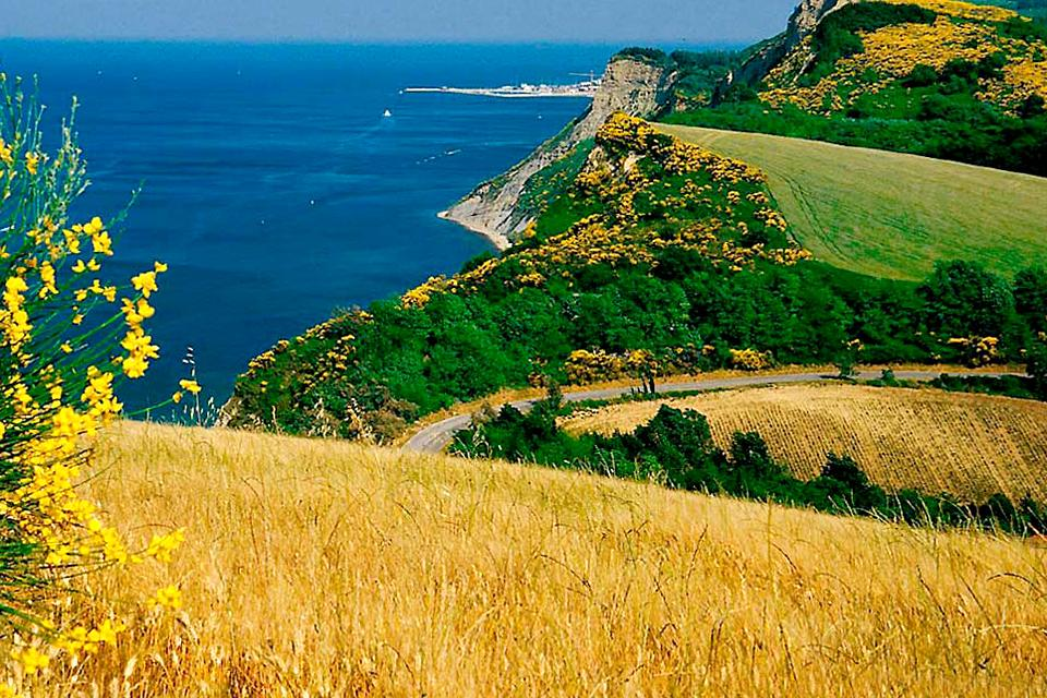 The Coast of Hills , National Gallery of the Marche , Italy
