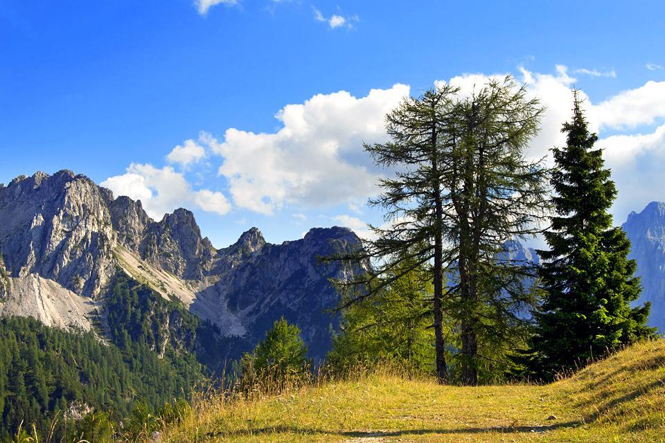 le parc naturel des pr alpes juliennes frioul v n tie julienne italie. Black Bedroom Furniture Sets. Home Design Ideas