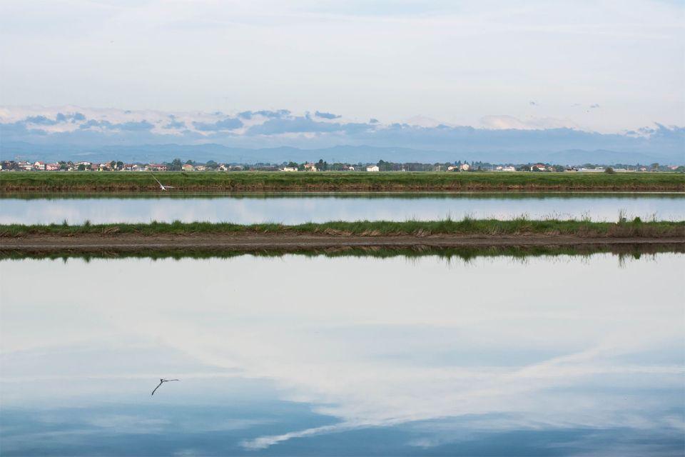 Il delta del Po , Il delta , Italia