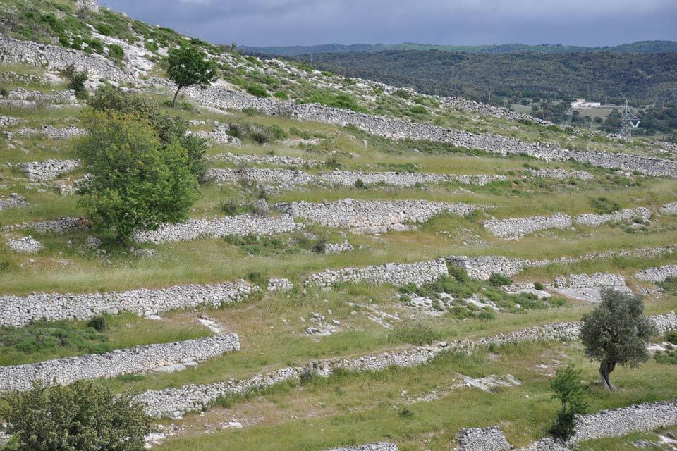 Il Gargano , Il territorio nel Gargano , Italia