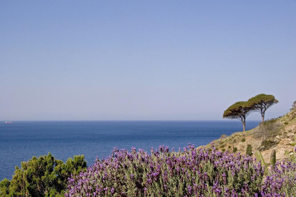 Die etruskische Küste , Marina di Castegneto und San Vincenzo , Italien