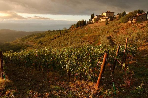 Chianti , Una granja de Chianti , Italia