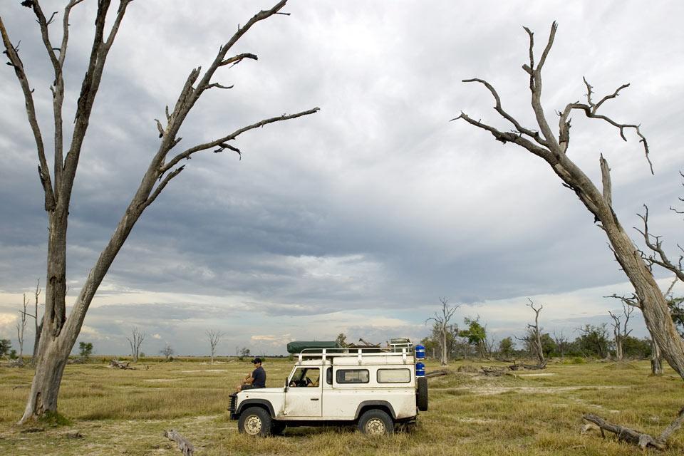 El Central Kalahari Game Reserve , Botsuana
