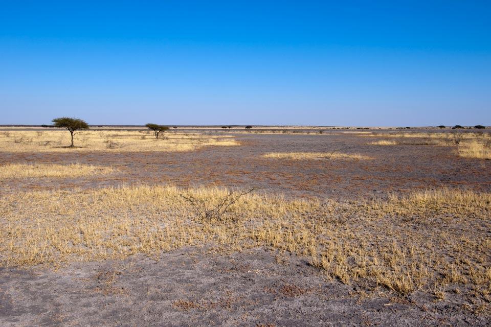 Le Central Kalahari Game Reserve , La taille du parc , Botswana