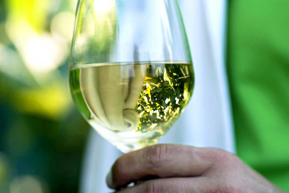 Les vignobles et le vin , Des bulles , Italie