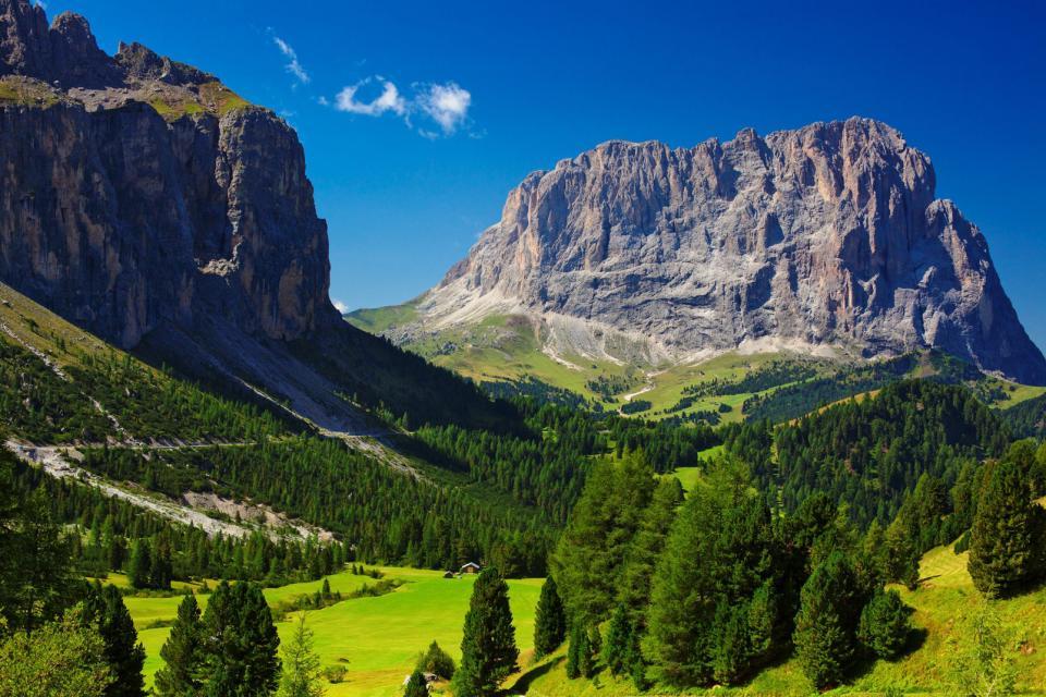 Les Dolomites , La végétation des Dolomites , Italie