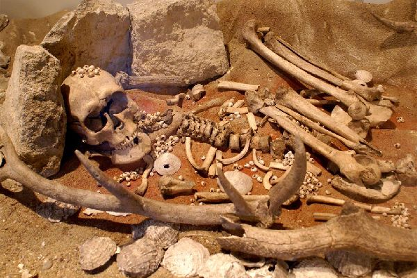 Art and History Museum of Saint-Brieuc , Carnac Museum of Prehistory , France