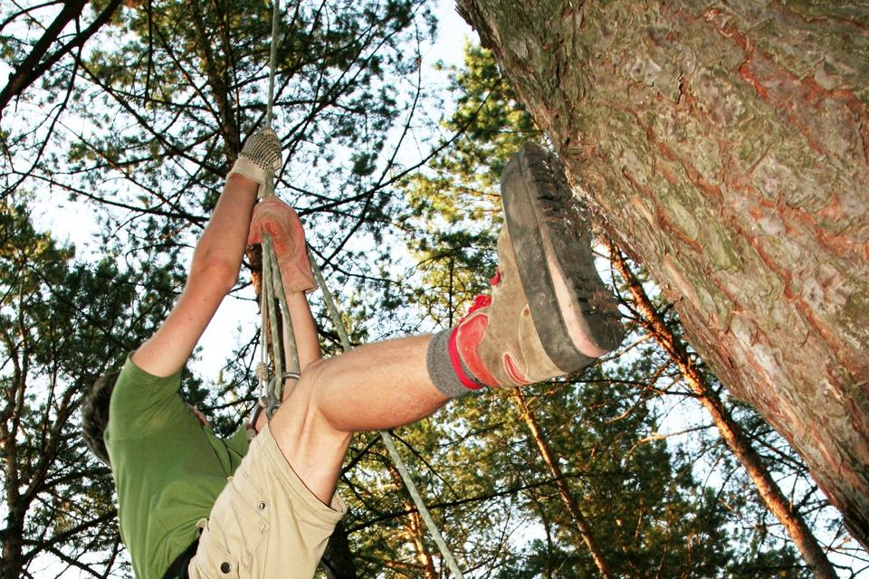 Tree-top adventures , France