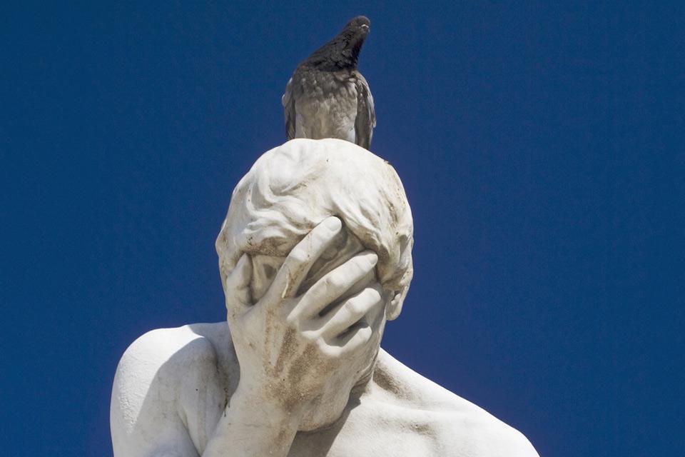 I piccioni , Il piccione, grande nemico delle statue. , Francia