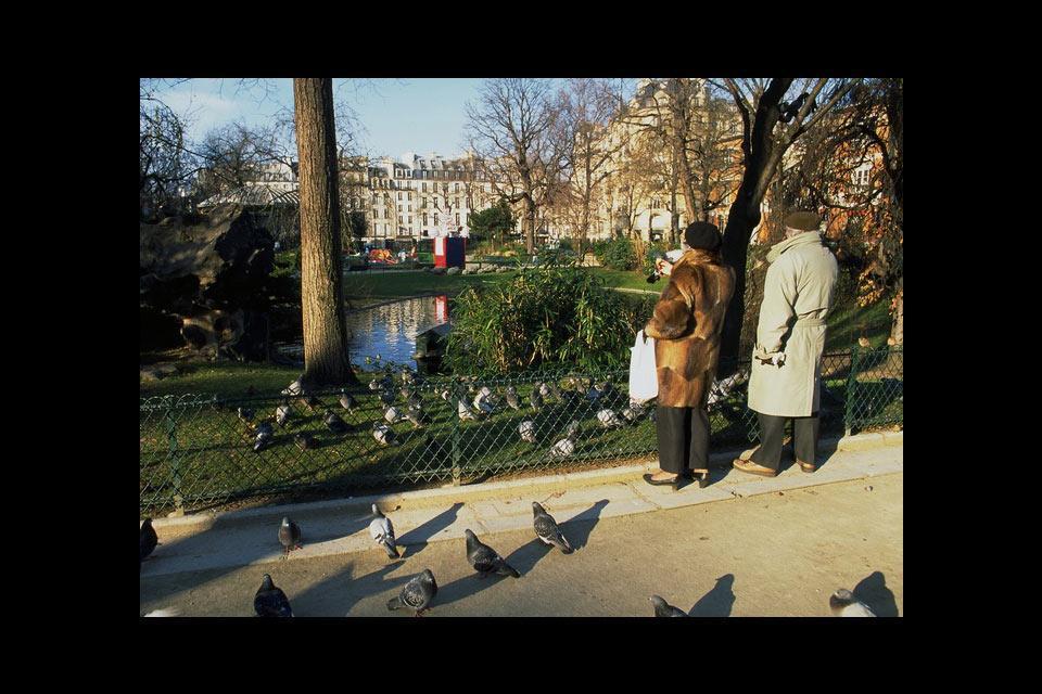 I piccioni , Il pasto dei piccioni , Francia