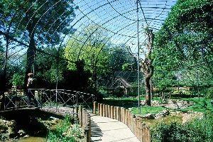 Observar la flora en Paris , Un recinto natural en la capital , Francia