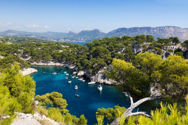 View of the coves, The Calanques from Marseille to Cassis, Coasts, Cassis, Provence-Alpes-Côte d'Azur