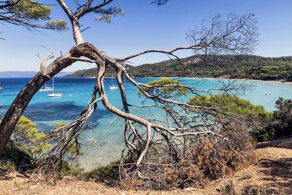 Fishing boats, The Îles d'Hyères and Lérins islands, Coasts, Provence-Alpes-Côte d'Azur