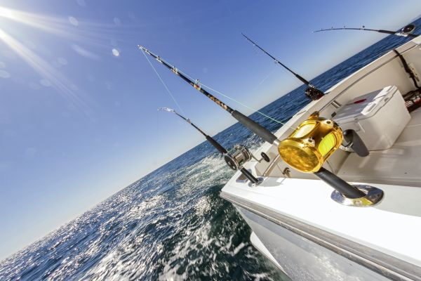 El material de pesca, La pesca, Las actividades de ocio, Provence-Alpes-Côte d'Azur