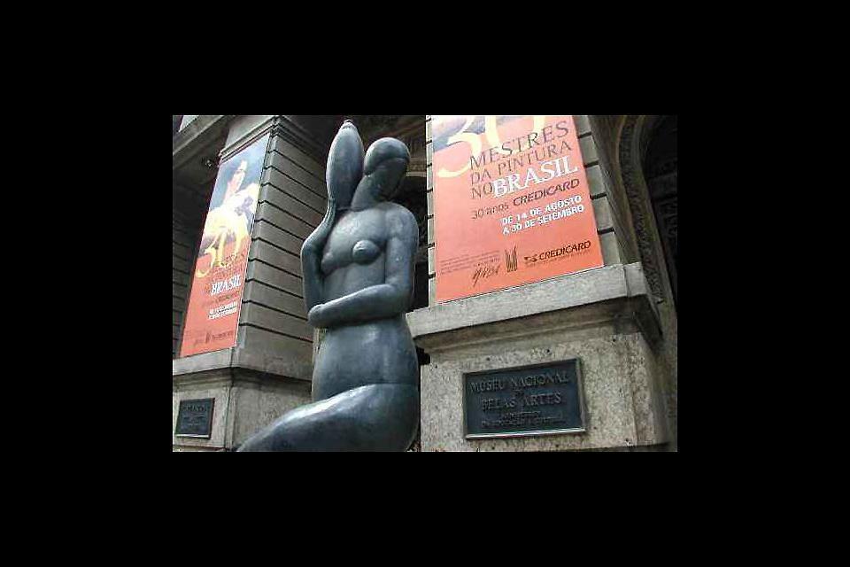 I musei , Il Museo Nazionale delle Belle Arti , Brasile