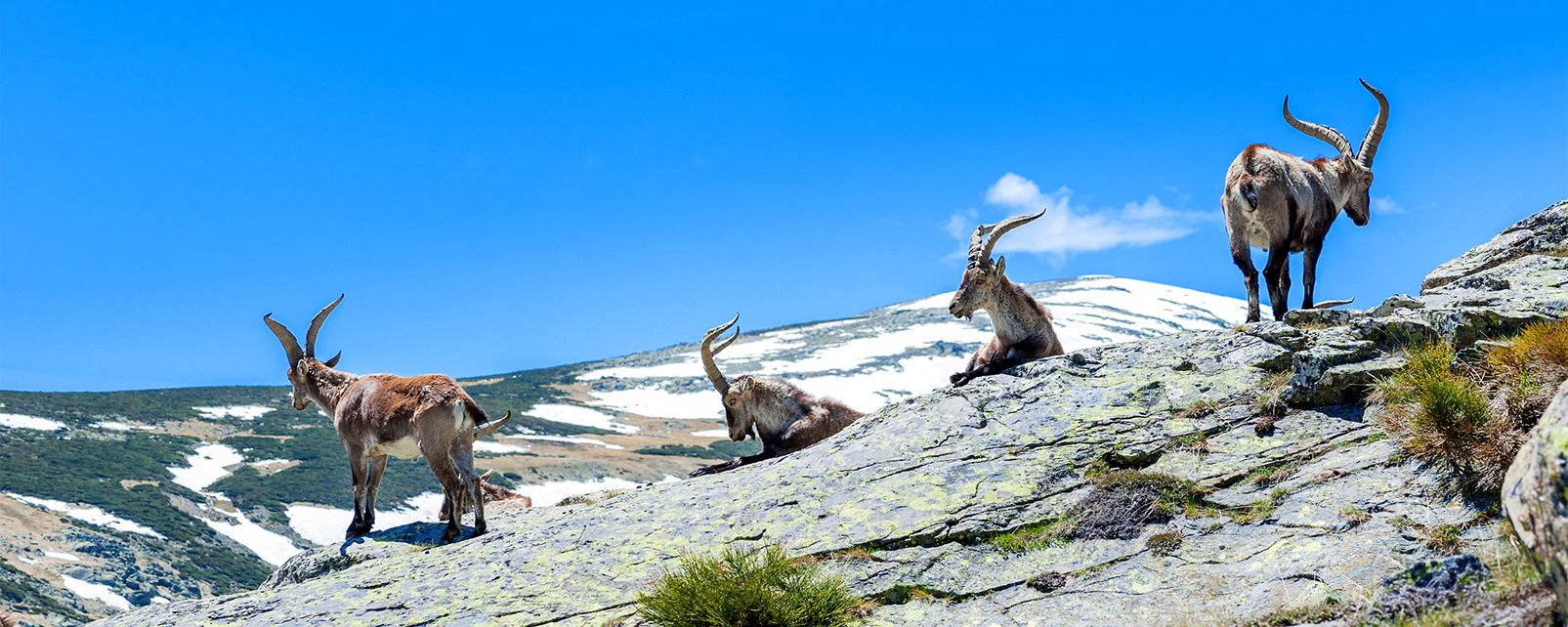 Le Parc naturel de Chera-Sot de Chera, Parc naturel de Chera-Sot de Chera, Les paysages et les activités, Communauté de Valence