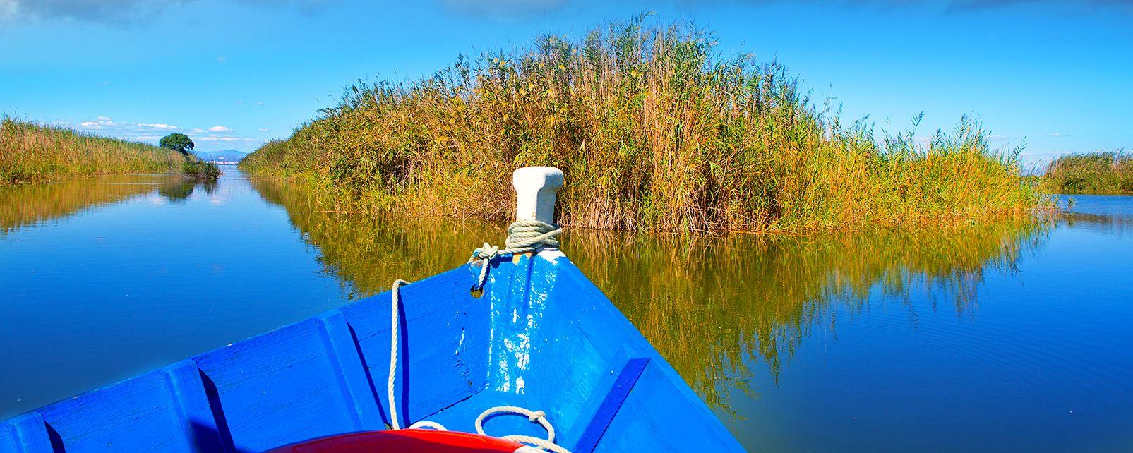 La Albufera e le lagune della Mata, L'Albufera e la Laguna della Mata, La fauna e la flora, Comunità valenzana