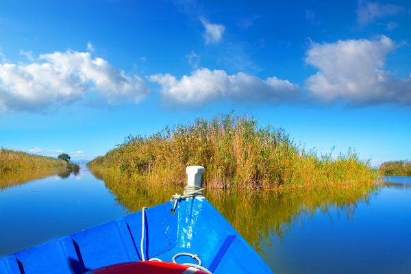 la Albufera et les lagunes de la Mata, La Albufera et les Lagunes de la Mata, La faune et la flore, Communauté de Valence