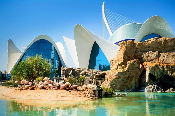 El Oceanográfico, Ciudad de las Artes y las Ciencias de Valencia, Arte y cultura, Comunidad Valenciana