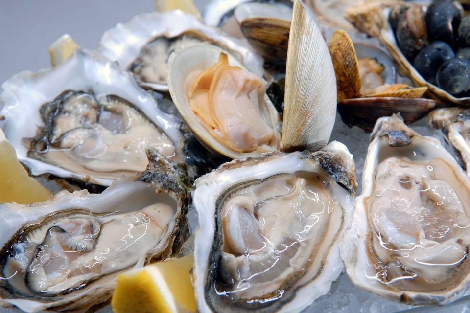 Mariscos y crustáceos , Francia