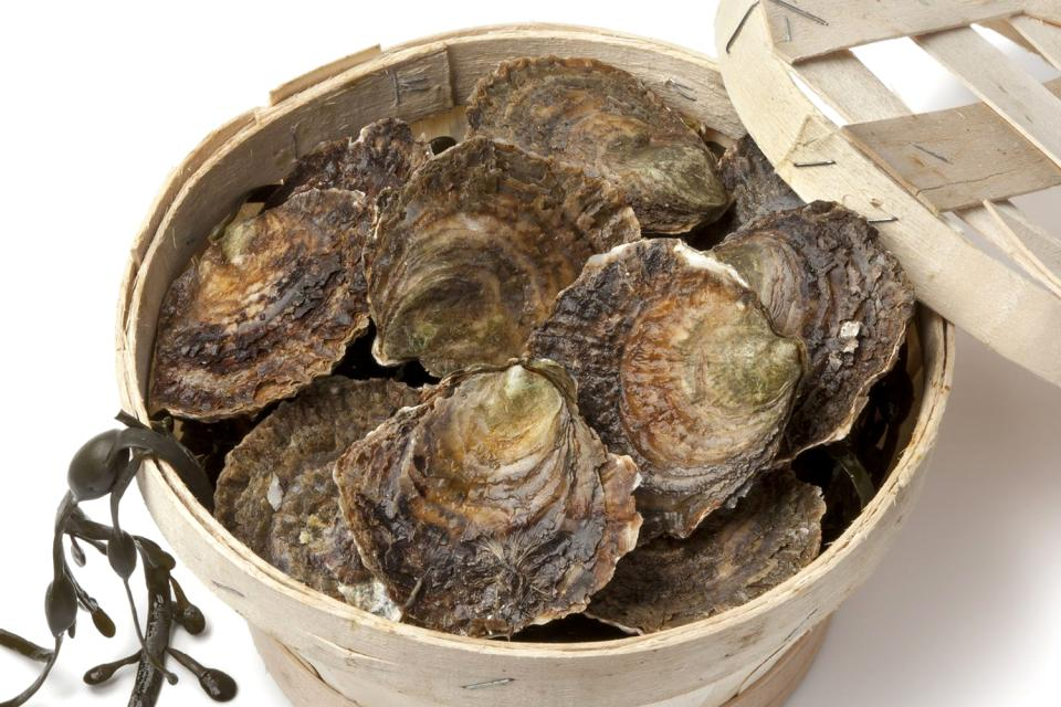 Mariscos y crustáceos , Ostra bretona , Francia
