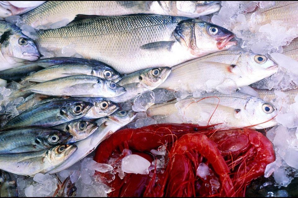 El pescado, Los pescados, Gastronomía, Bretaña