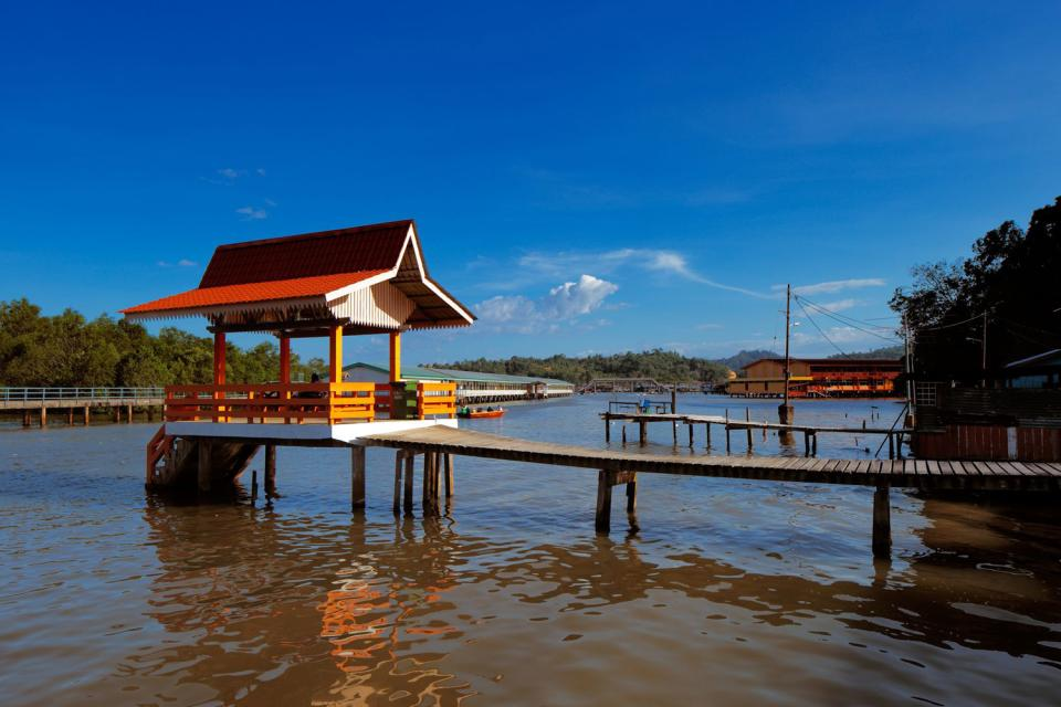 The coastal plain , Brunei